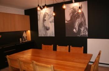 sala HorseSense
