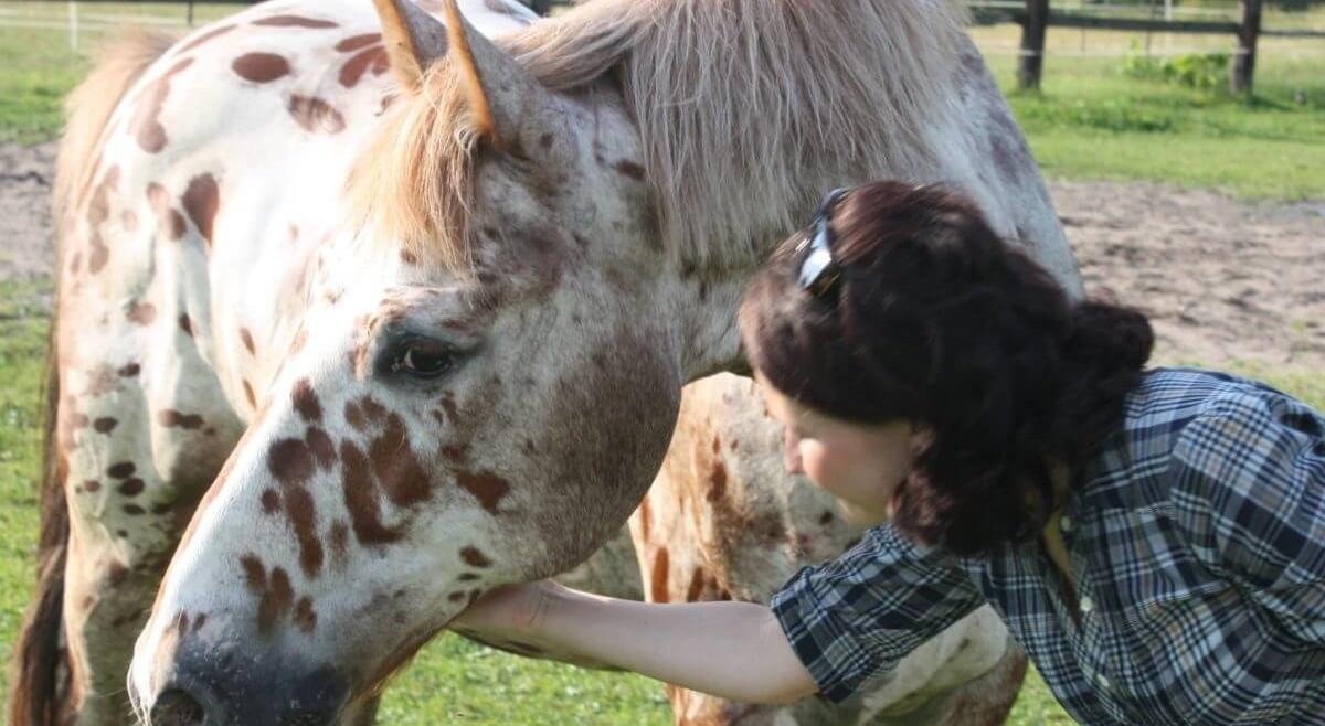 Jak konie mogą pomóc wrozwoju? – odcinek 9 – Zwiatrem wgrzywie