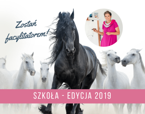 Szkoła - edycja 2019