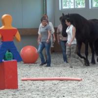 grupa z koniem2