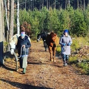 idziemy z końmi