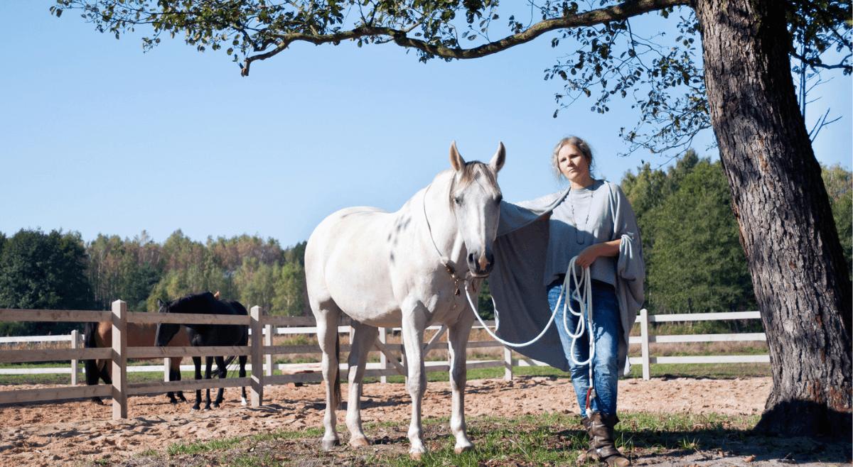Jak przygotowuję konie doroli trenerów – odcinek 17