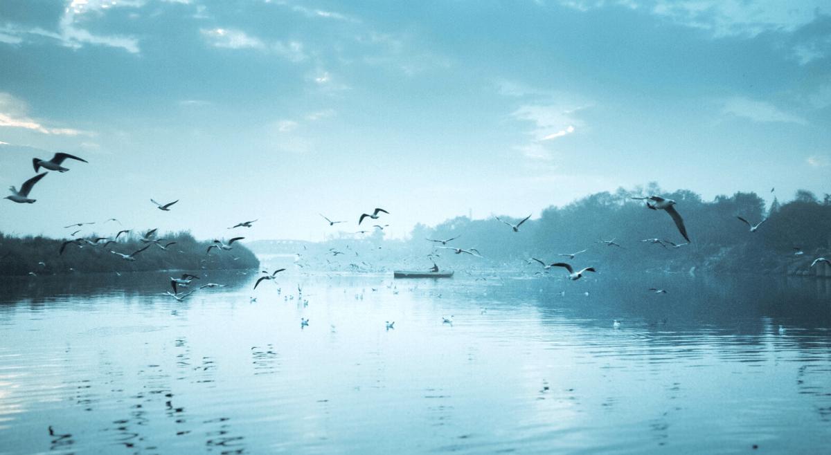 Oswoić śmierć – Odcinek 44